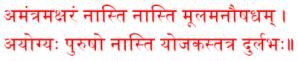 gen-amantramaksharam-naasti