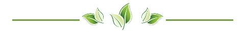 Image result for page divider green leaves