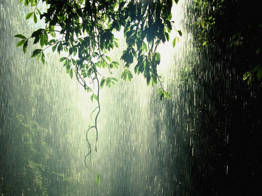 its rainy season time for some rain songs p rayaprolu s weblog